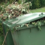Garden waste collections to resume in Redcar and Cleveland